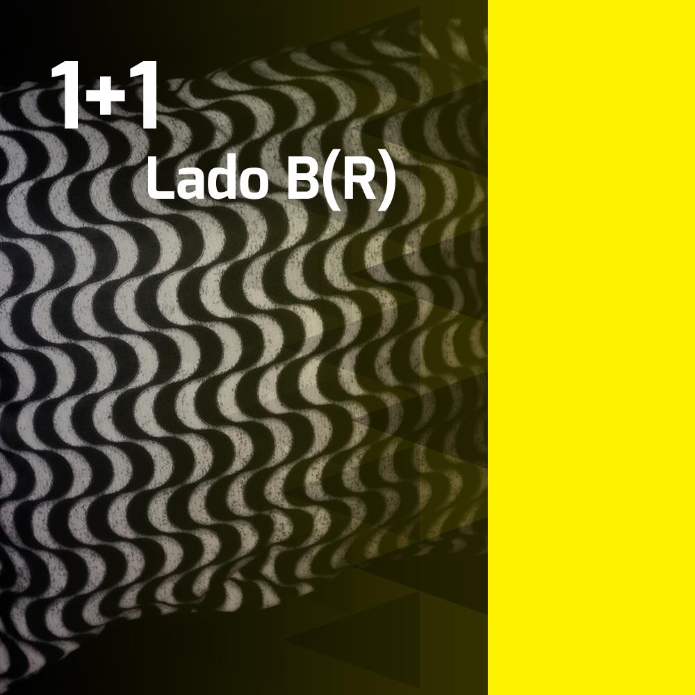 1+1_ladobr