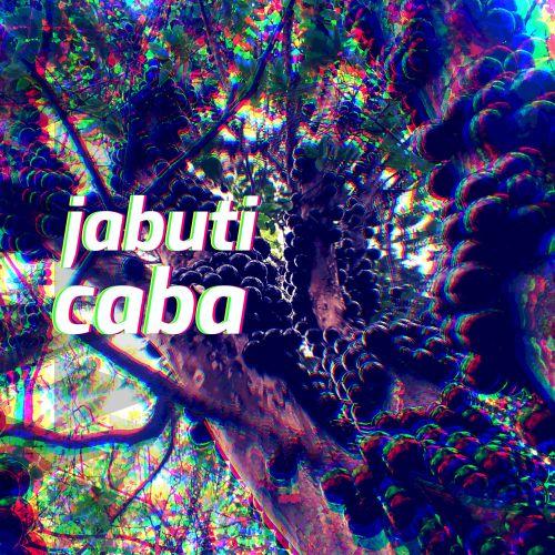 Jabuticaba